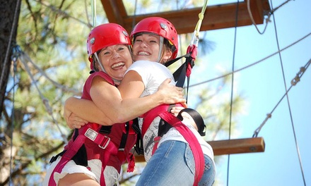 $29.99 for a Three-Hour Aerial Adventure with a Zipline at Adventure Dynamics ($59.95 Value)