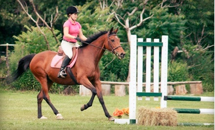 Horseback-Riding and Grooming Lesson for One, Two, or Four at Spruce Meadow Farm (Up to 72% Off)