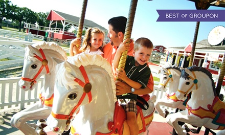 Farmyard and Attractions Experience for Two or Four or Charitable Donation at Lambs Farm (Up to 50% Off)