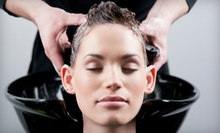 Cut and Condition with Optional Color or Partial Highlights, or Full Highlights at Cass & Company Salon (Up to 58% Off)