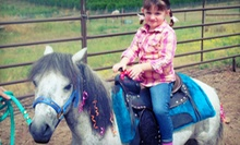 One-Hour Pony Experiencefor One, Two, or Four from Oregon Dream Ponies (Up to 55% Off)