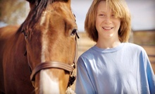 One or Four Private Horseback-Riding Lessons at Outlaw Acres (Up to 61% Off)