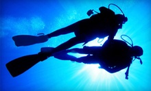 Discover Scuba Course for One, Two, or Four People at Coral Reef Dive Shop in Slidell (Up to 51% Off)