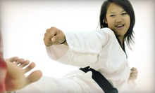 10 or 20 Cardio-Kickboxing Classes at World Black Ryu Martial Arts (Up to 82% Off)
