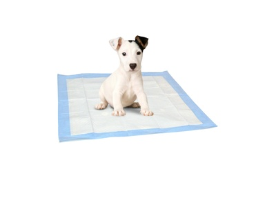 100-Pack of American Kennel Club Puppy-Training Pads