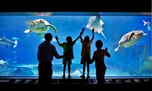 $175 for One-Year Family Membership at Adventure Aquarium and Elmwood Park Zoo ($285 Value)