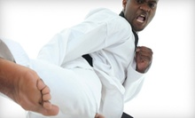 Martial-Arts Classes at Class One Mixed Martial Arts & CrossFit (Up to 85% Off). Three Options Available.