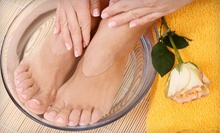 Manicure and Pedicure or Shellac Manicure and Pedicure at Spalon (Up to 55% Off)
