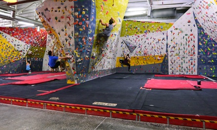 Two or Four Rock-Climbing Day Passes with Shoe Rental at First Avenue Rocks (Up to 47% Off)