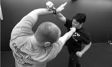 10 or 20 Krav Maga Classes at Cannon Ridge Training Center (89% Off)