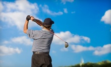 One or Three 45-Minute Golf Lessons at Dan Spiegel Golf Academy (Up to 65% Off)
