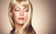 Women's Haircut, Style, and Blow-Dry with Optional Partial or Full Highlights at Acaj Salon (Up to 62% Off)