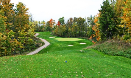 Golf Package for Two or Four of Membership at Dufferin Glen Golf Club (Up to 58% Off). Four Options Available.