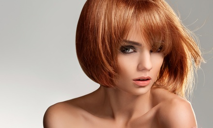 Haircut and Condition with Optional Single-Process Color or Partial or Full Highlights at Safar (Up to 59% Off)