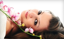 Signature Facial, Apple-Elixir Body Wrap, or Both at New You Face &amp; Body Inc. (Up to 59% Off)