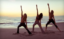 $49 for 10 Yoga Classes at The Yoga Practice in West Vancouver ($160 Value)