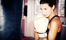 10 Boxing Classes or One Month of Unlimited Boxing Classes at Siberia Boxing Club (Up to 55% Off)