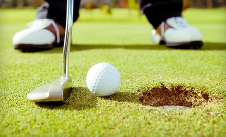 $39 for a 30-Minute Private Golf Lesson and 45 Minutes of Range Practice at Cedarbrook Country Club ($80 Value)