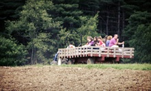 Admission for Four or Six to Farm Fest on Saturday, June 1 at The Children's Farm at The Center (Half Off)