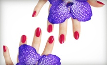 $19 for a Mani-Pedi at NK Salon by Nerik ($95 Value)