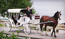 Carriage Ride for Up to Four, or a 30-Minute Historical Tour for Two or Four from Carousel Horse Farm (Up to 51% Off)