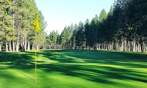 18-hole Round Of Golf With Cart For Two On A Weekday Or Weekend At Sun Dance Golf Course (36% Off)