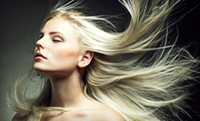 Haircut, Style, and Ammonia-Free All-Over Color, Highlights, or Both at Jane Salon (Up to 61% Off)