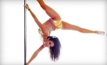 10 or 20 Pole and Fitness Classes or a One-Year Membership with Unlimited Classes at Pole Dance Miami (Up to 58% Off)