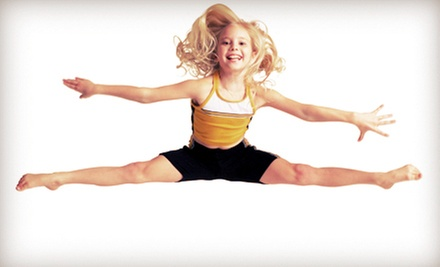 Four 60-Minute Private Trampoline Lessons for One or Two at The Trampoline Place (Up to 52% Off)