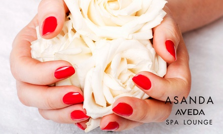 One, Two, or Three Shellac, Chakra, or Caribbean Mani-Pedis at Asanda Aveda Spa Lounge (Up to 67% Off)