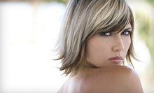 Haircut Package with Optional All-Over Color or Highlights from Victor Henson at Dharma Salon and Spa (Up to 56% Off)