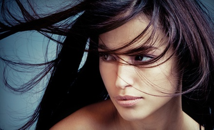 One or Three Salon Blowouts from Karin Petersen at La Renaissance Salon (Up to 67% Off)