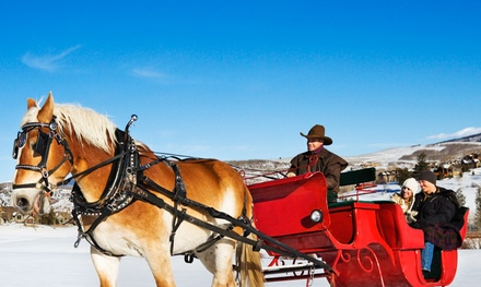 Horse-Drawn Christmas Lights Carriage Ride for Up to 6, 12, or 20 from Pleasures Past Carriages (Up to 47% Off)