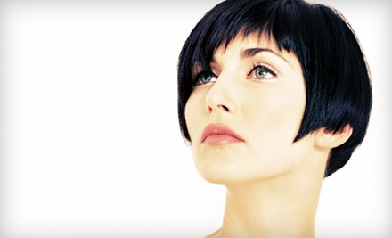 Haircut and Style with Optional Single Process Color at Top Image Salon (Up to 55% Off)