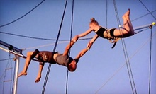 $39.99 for a 60-Minute Trapeze Lesson at Terry Cavaretta Trapeze Experience ($80 Value)