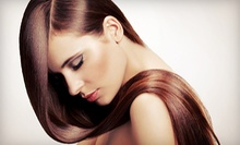 Haircut and Scalp Massage or Full Highlights from Carol Haas Hair Design at Manu International Salon (Up to 54% Off)