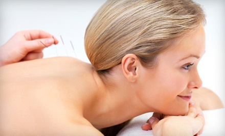 One, Two, or Four 60-Minute Acupuncture Sessions at Anoka Massage & Pain Therapy (Up to 71% Off)