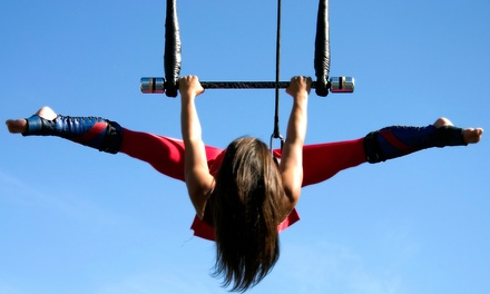 $32 for a 90-Minute Flying-Trapeze Class at Trapeze High (Up to $60 Value)