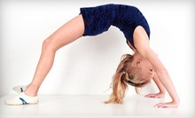 One-Week Summer Camp or Five Lessons at Lexington Gymnastics and Cheerleading (Up to 73% Off)