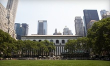 Walking Tours from NYC GoGreen Tours (Up to 60% Off). Four Options Available.