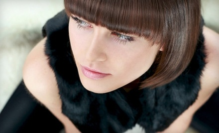 Haircut with Deep-Conditioning Treatment, Color Touchup, or Partial Highlights at Paul David Salon (Up to 73% Off)