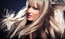 Cut, Style, and Optional All-Over Color or Partial Highlights at Hair &amp; Makeup Artistry by Liz Guillot (Up to 60% Off) 