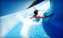Admission for Four to Great Waves Waterpark (Up to 51% Off). Five Options Available.