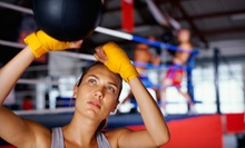 5 or 10 Outdoor Group Boxing-Boot-Camp Sessions from VFitness Boxing (Up to 71% Off)