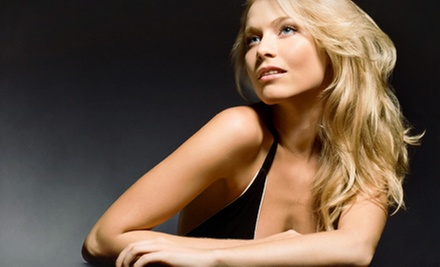 Haircut and Conditioning Treatment with Color or Partial or Full Highlights at E. Harlan Scott Salon (Up to 83% Off)