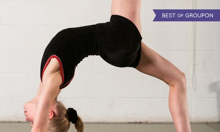 $99 for a One-Week Kids' Summer Camp at Team Attraction Gymnastics ($$200 Value)