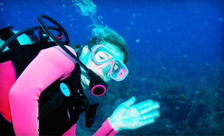 Introductory Scuba-Diving Class or SSI Open Water Diver Class with Certification at Ski Scuba Center (Up to 52% Off)