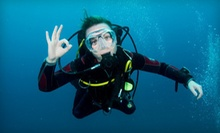 Intro Scuba, Scuba Tune-Up, or Open-Water Certification at The Playground Dive Shop (Up to 55% Off)