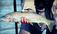 $20 for an Introduction to Fly-Fishing or Fly-Tying Class at Nomad Anglers ($60 Value)