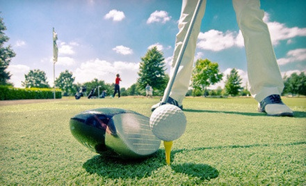One or Three 60-Minute Private Golf Lessons with Video Analysis at Golf Instruction Orlando (Up to 59% Off)